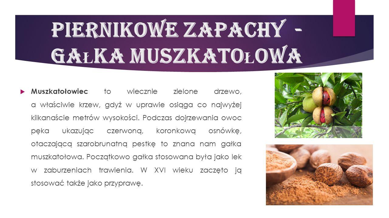 Piernikowe zapachy - gaŁka MuszkatoŁowa