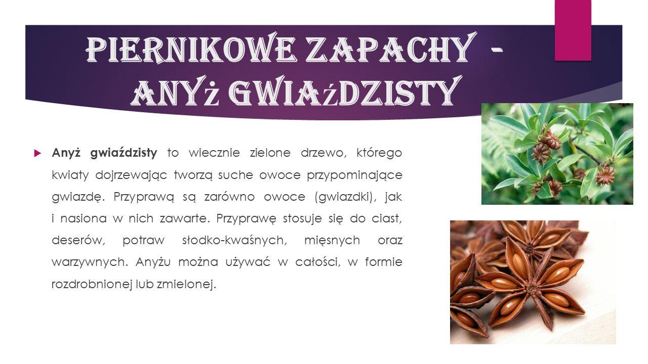 Piernikowe zapachy - anyż GwiaŹdzisty