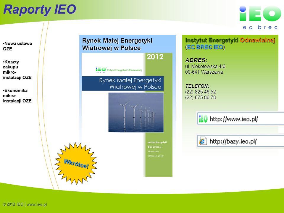 Raporty IEO Rynek Małej Energetyki Wiatrowej w Polsce