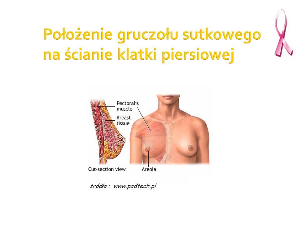 Położenie gruczołu sutkowego na ścianie klatki piersiowej