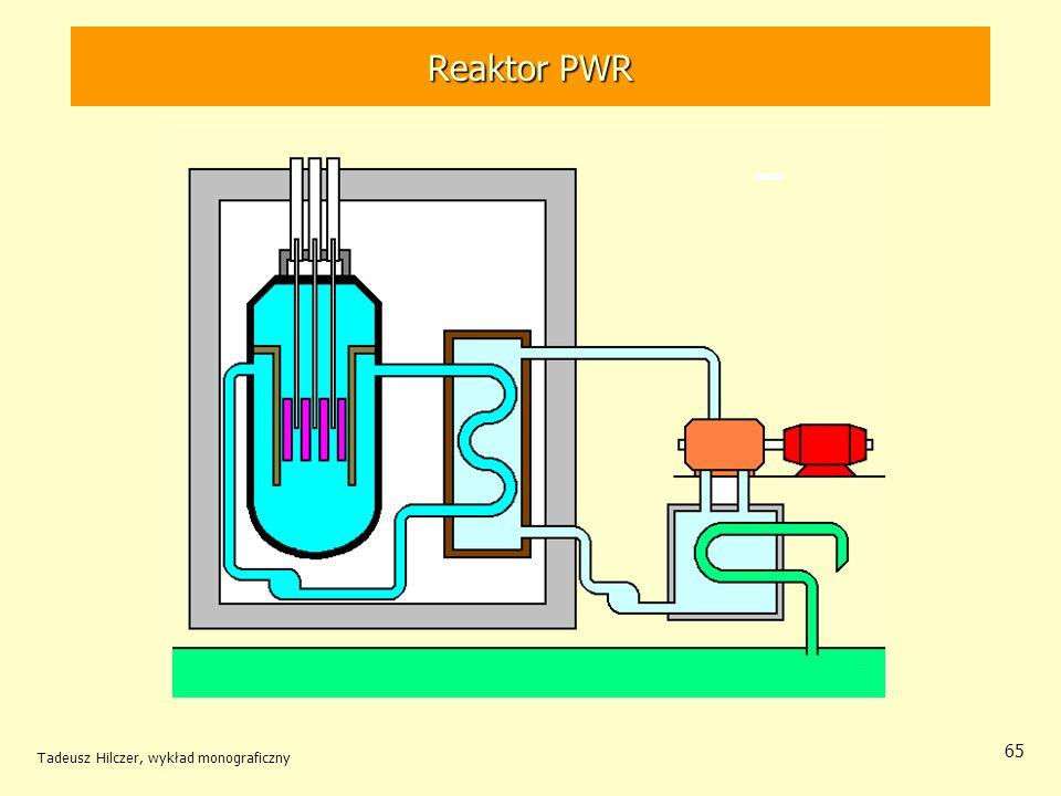 Reaktor PWR Tadeusz Hilczer, wykład monograficzny