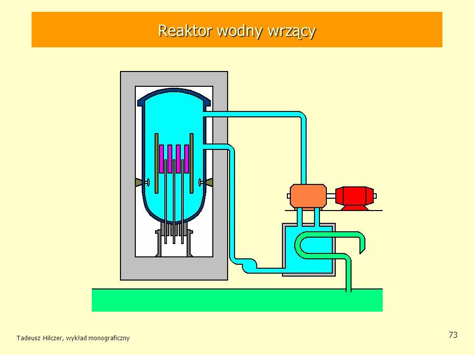 Reaktor wodny wrzący Tadeusz Hilczer, wykład monograficzny