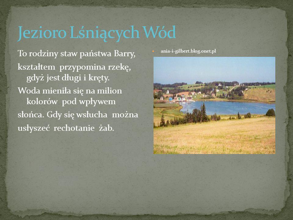 Jezioro Lśniących Wód To rodziny staw państwa Barry,