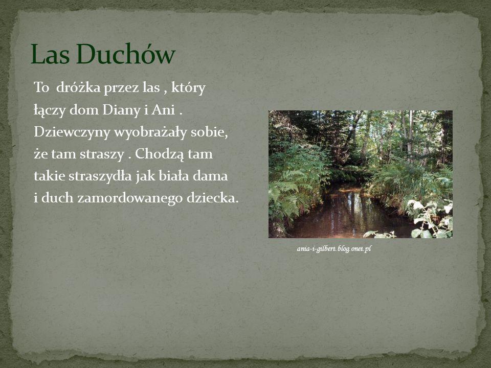 Las Duchów To dróżka przez las , który łączy dom Diany i Ani .