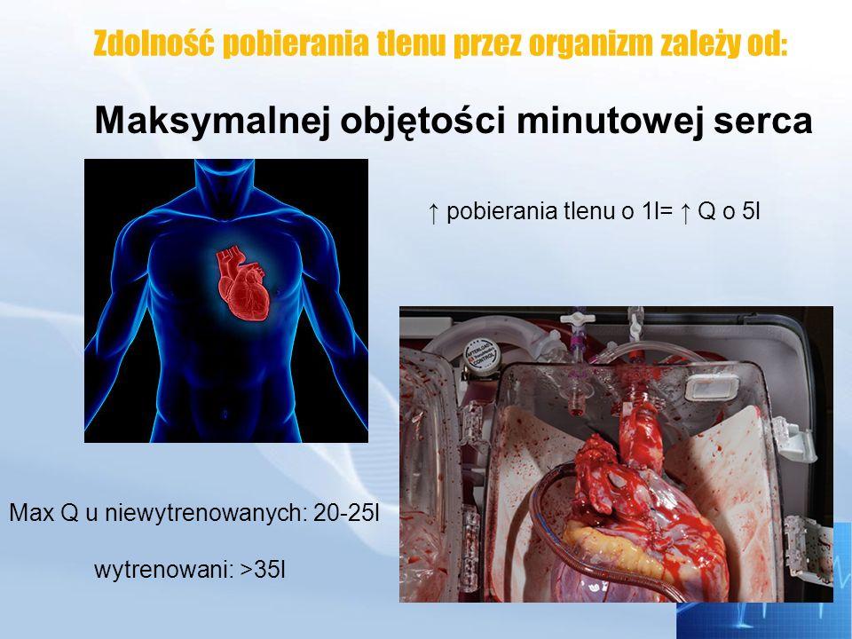 Zdolność pobierania tlenu przez organizm zależy od: