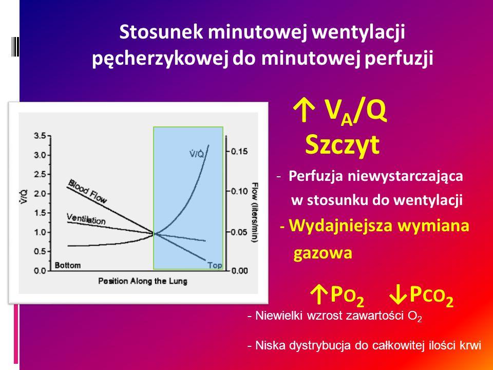 Stosunek minutowej wentylacji pęcherzykowej do minutowej perfuzji
