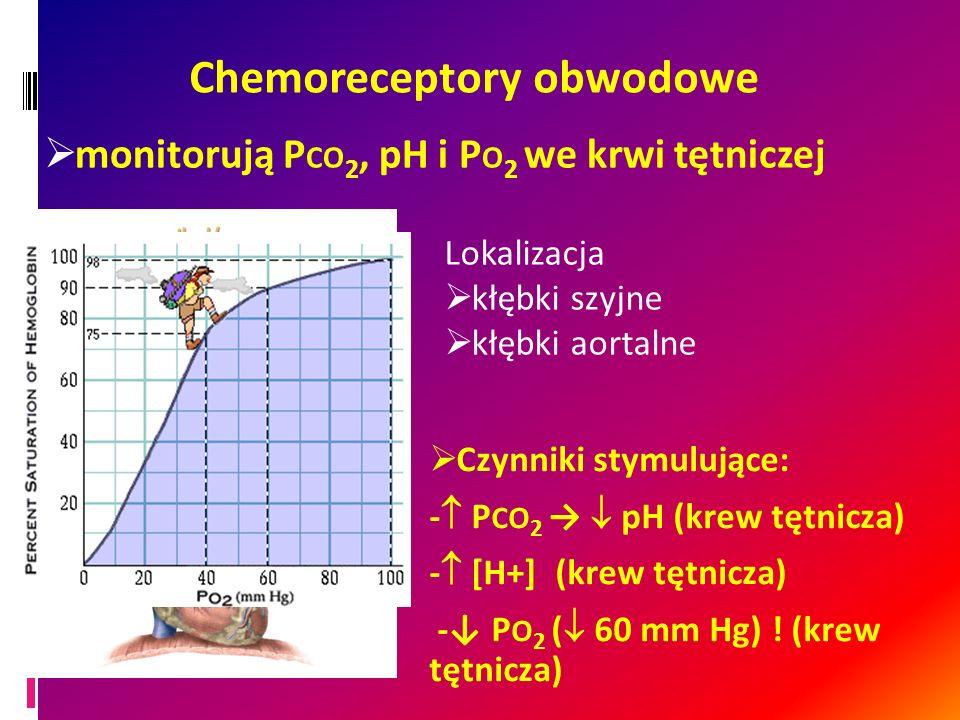 Chemoreceptory obwodowe