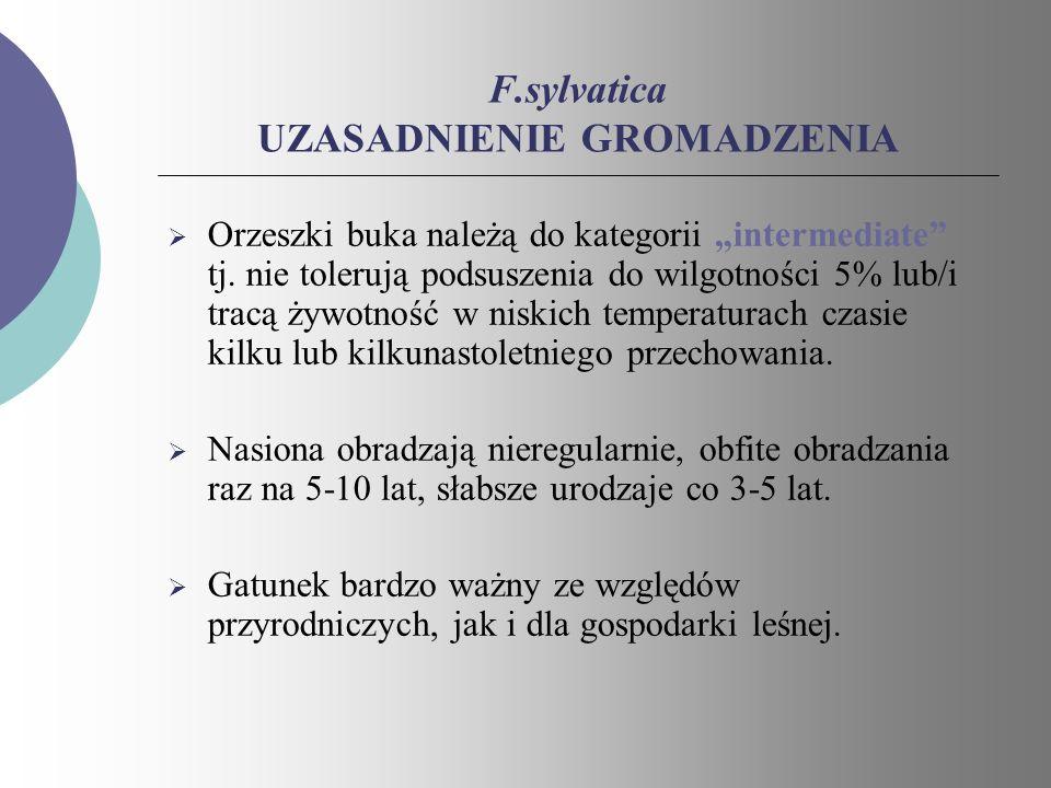 F.sylvatica UZASADNIENIE GROMADZENIA