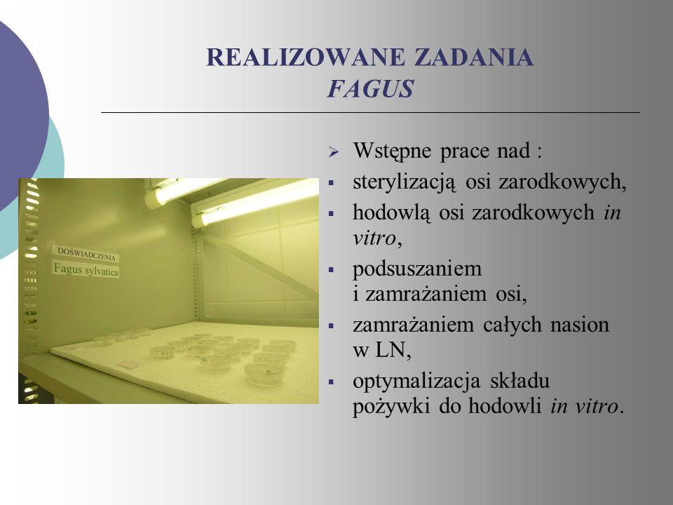REALIZOWANE ZADANIA FAGUS
