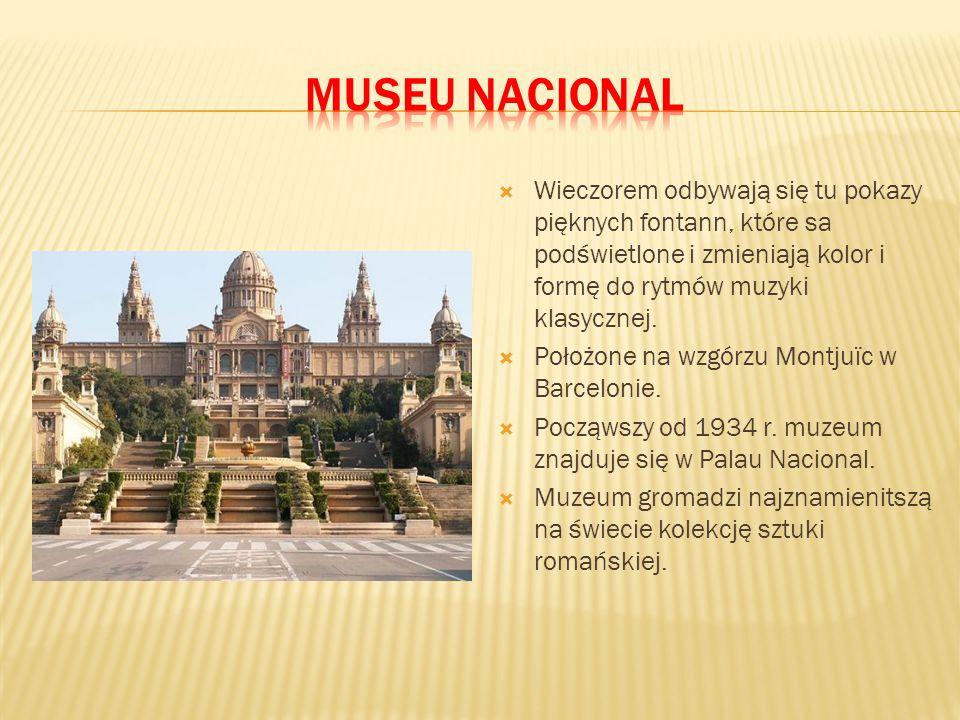 museu Nacional Wieczorem odbywają się tu pokazy pięknych fontann, które sa podświetlone i zmieniają kolor i formę do rytmów muzyki klasycznej.