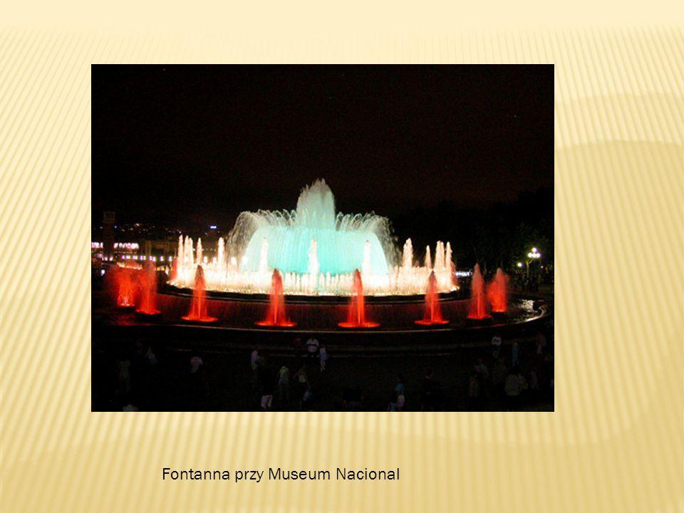 Fontanna przy Museum Nacional