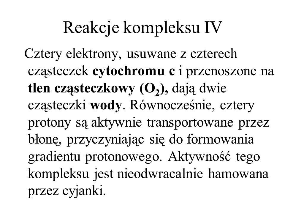 Reakcje kompleksu IV