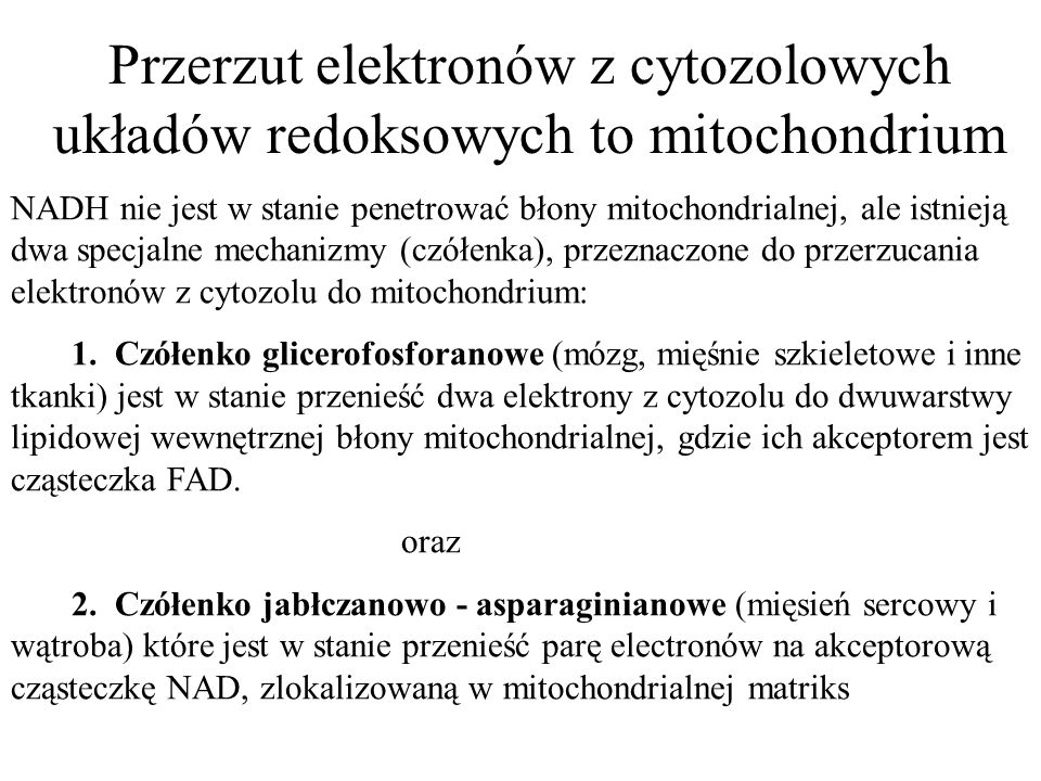 Przerzut elektronów z cytozolowych układów redoksowych to mitochondrium