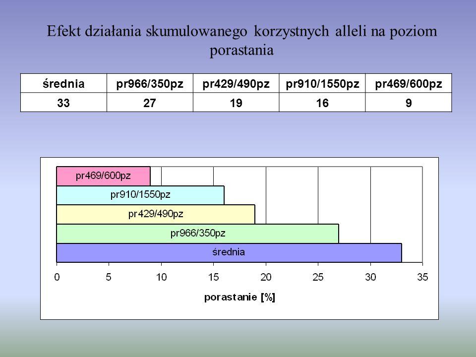 Efekt działania skumulowanego korzystnych alleli na poziom porastania