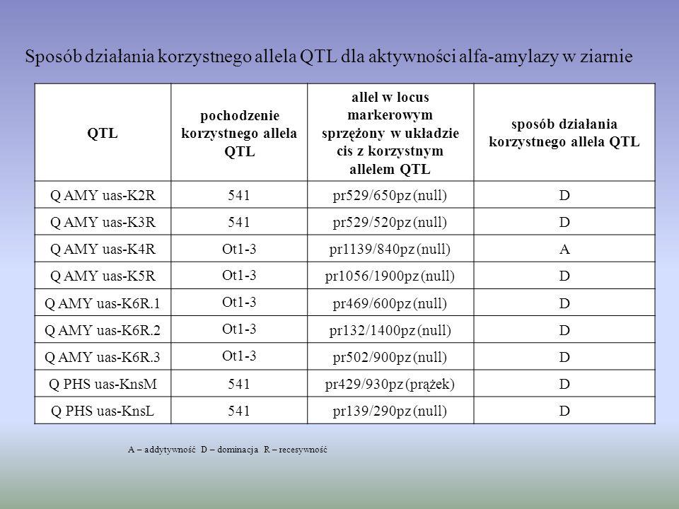 sposób działania korzystnego allela QTL