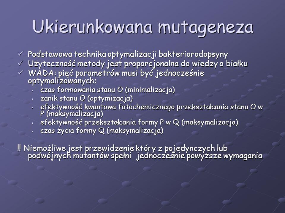 Ukierunkowana mutageneza