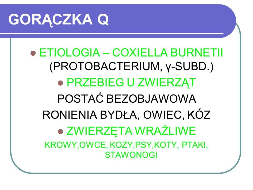 GORĄCZKA Q ETIOLOGIA – COXIELLA BURNETII (PROTOBACTERIUM, γ-SUBD.)