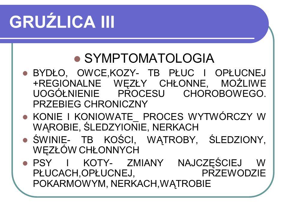 GRUŹLICA III SYMPTOMATOLOGIA