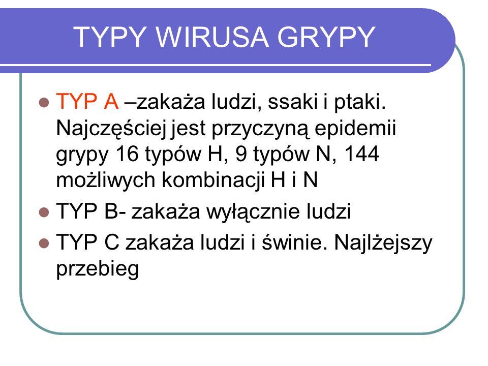 TYPY WIRUSA GRYPY TYP A –zakaża ludzi, ssaki i ptaki. Najczęściej jest przyczyną epidemii grypy 16 typów H, 9 typów N, 144 możliwych kombinacji H i N.