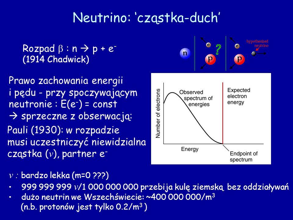 Neutrino: 'cząstka-duch'