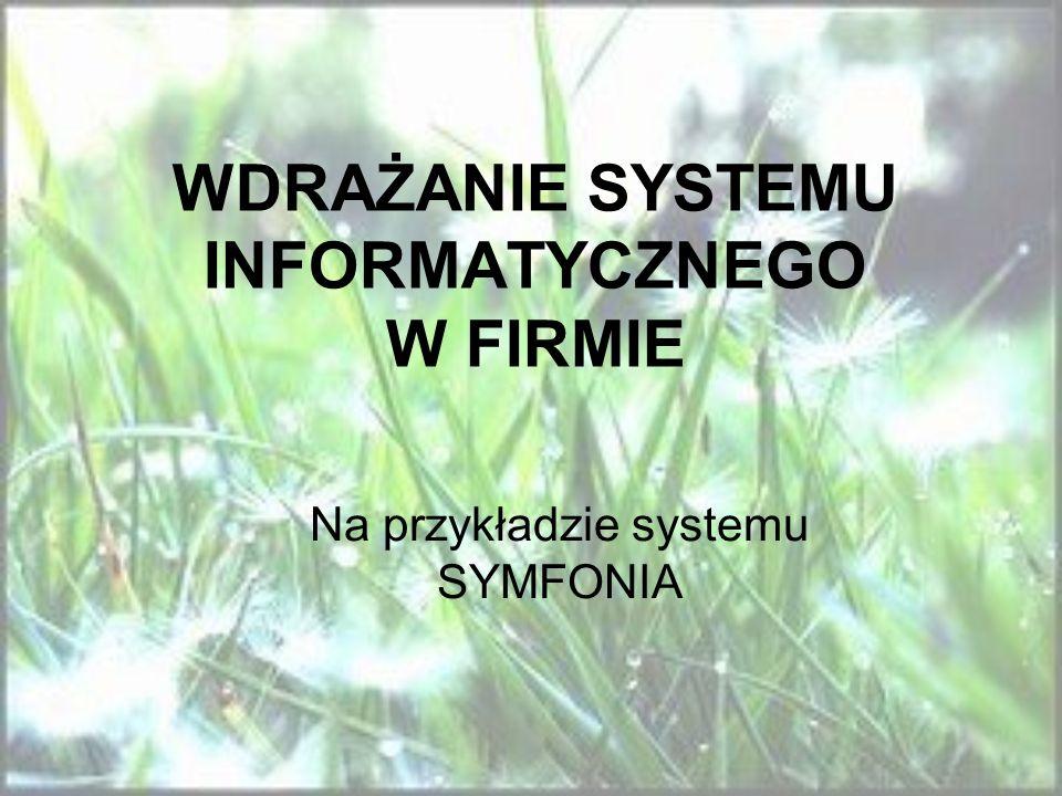 WDRAŻANIE SYSTEMU INFORMATYCZNEGO W FIRMIE