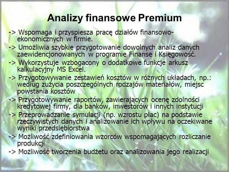 Analizy finansowe Premium
