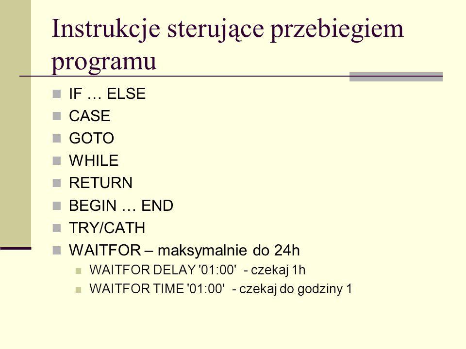 Instrukcje sterujące przebiegiem programu