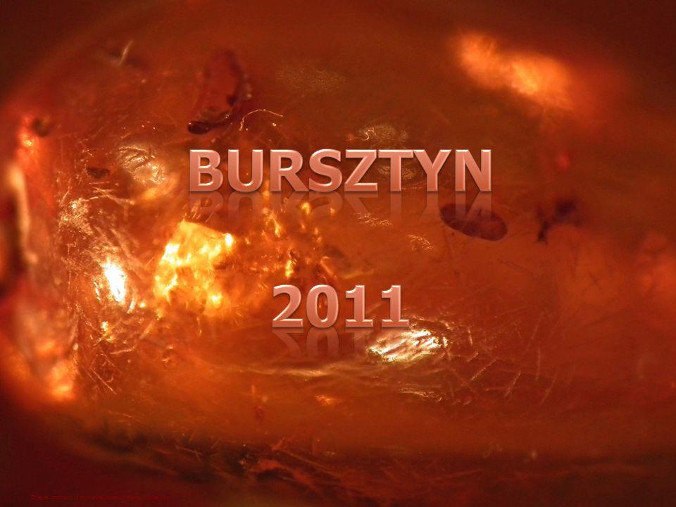BURSZTYN 2011 Zdjęcie pochodzi z prywatnej kolekcji Marty Muchewicz