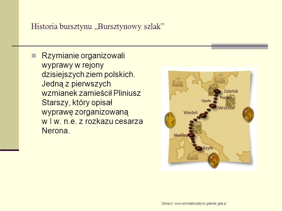 """Historia bursztynu """"Bursztynowy szlak"""