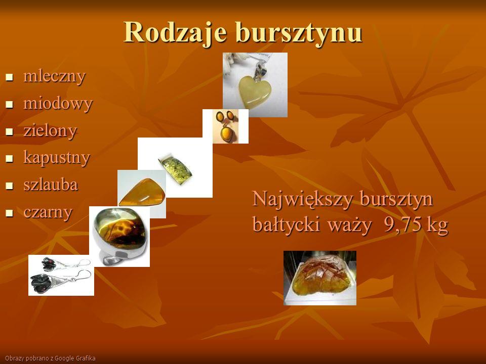 Rodzaje bursztynu Największy bursztyn bałtycki waży 9,75 kg mleczny