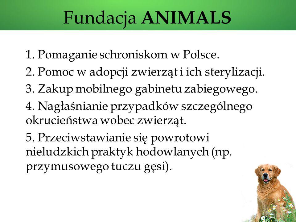 Fundacja ANIMALS 1. Pomaganie schroniskom w Polsce.