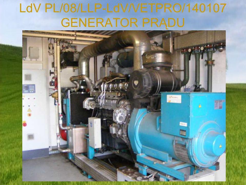 LdV PL/08/LLP-LdV/VETPRO/140107 GENERATOR PRĄDU
