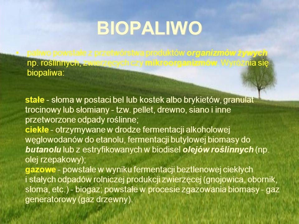 BIOPALIWO paliwo powstałe z przetwórstwa produktów organizmów żywych np. roślinnych, zwierzęcych czy mikroorganizmów. Wyróżnia się biopaliwa:
