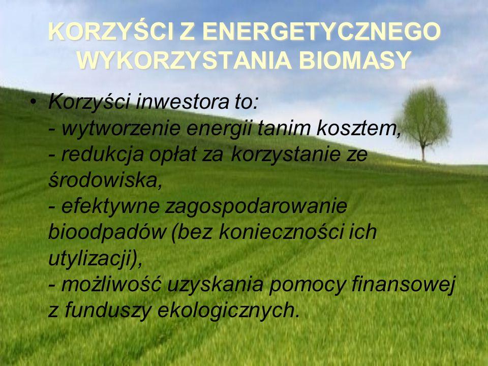 KORZYŚCI Z ENERGETYCZNEGO WYKORZYSTANIA BIOMASY