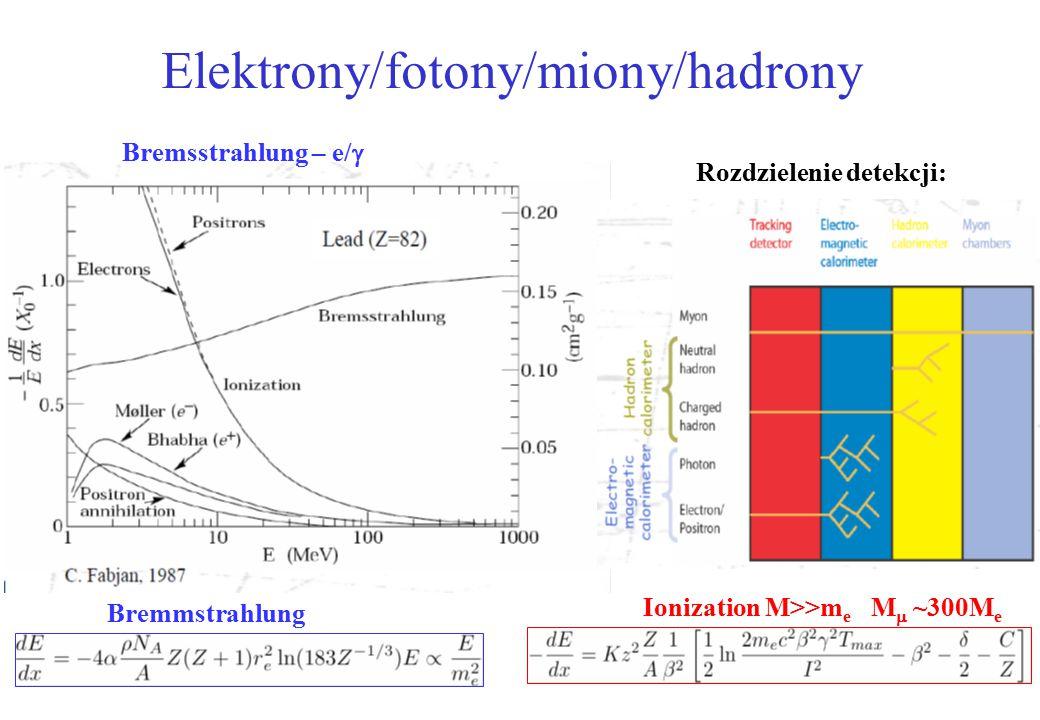 Elektrony/fotony/miony/hadrony