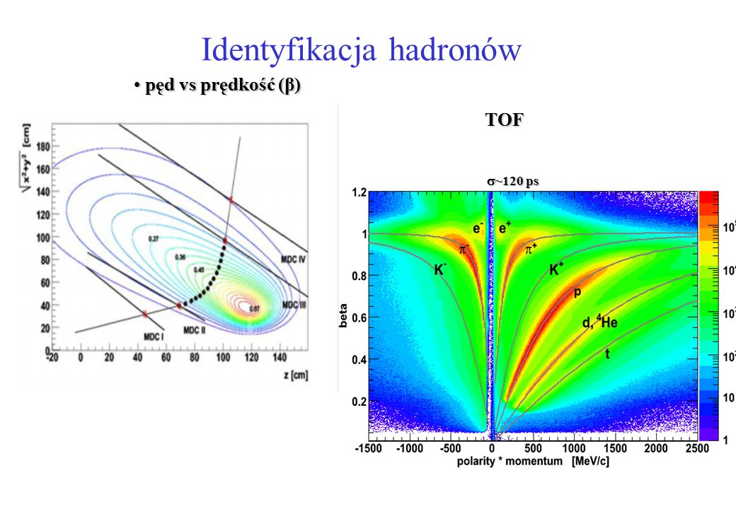Identyfikacja hadronów