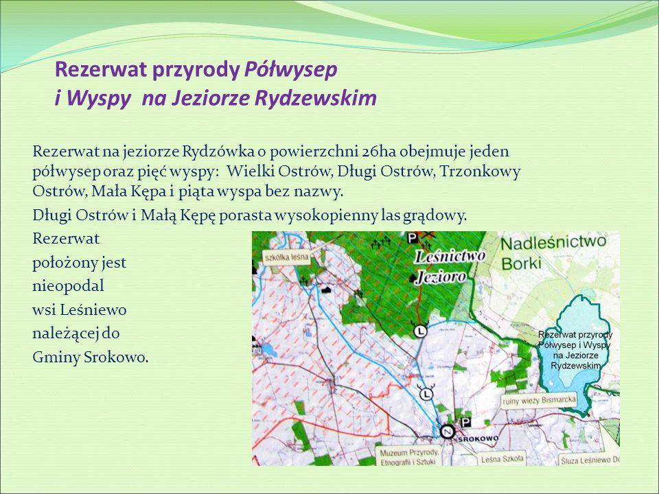 Rezerwat przyrody Półwysep i Wyspy na Jeziorze Rydzewskim