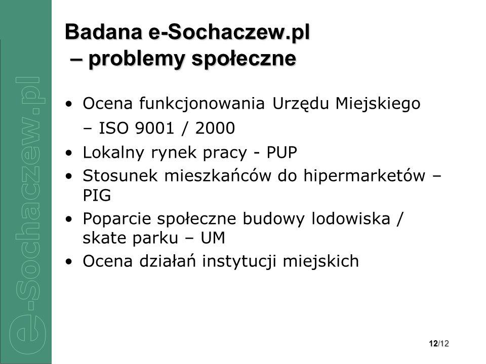 Badana e-Sochaczew.pl – problemy społeczne