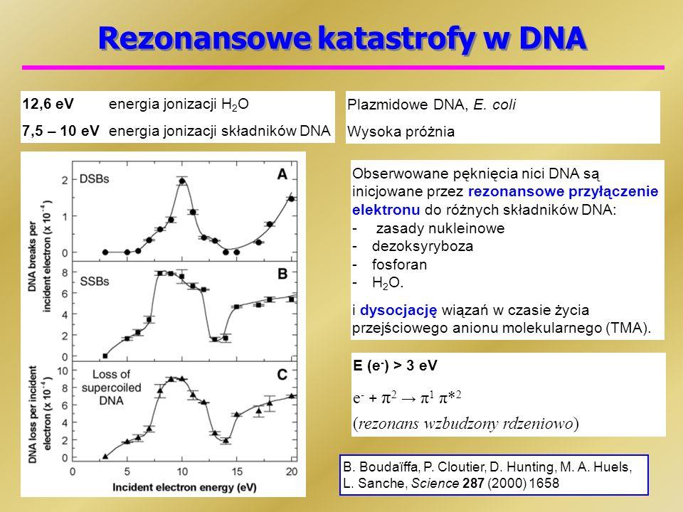 Rezonansowe katastrofy w DNA