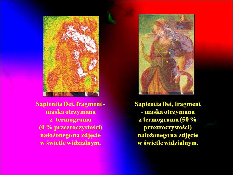 Sapientia Dei, fragment - maska otrzymana z termogramu (0 % przezroczystości) nałożonego na zdjęcie w świetle widzialnym.