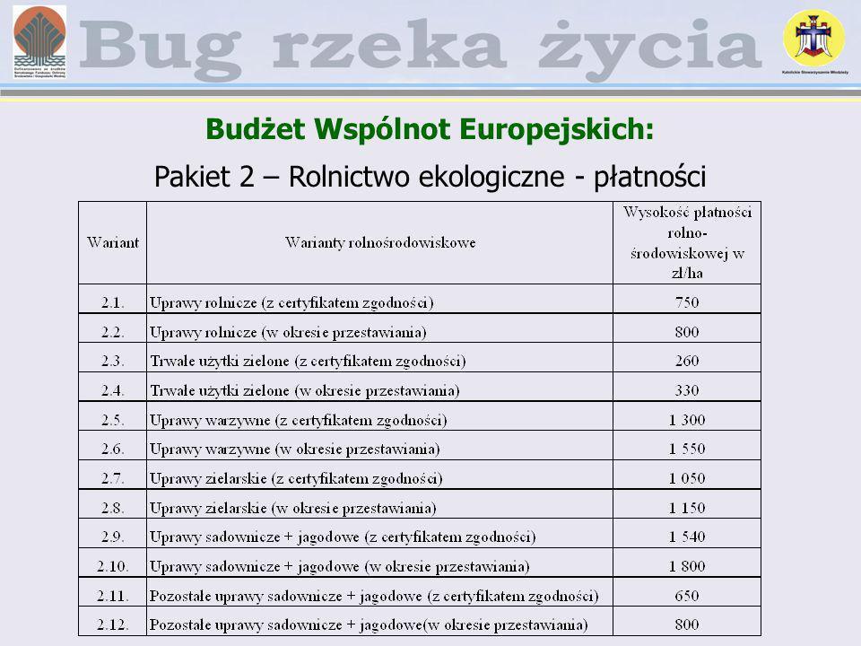 Budżet Wspólnot Europejskich: