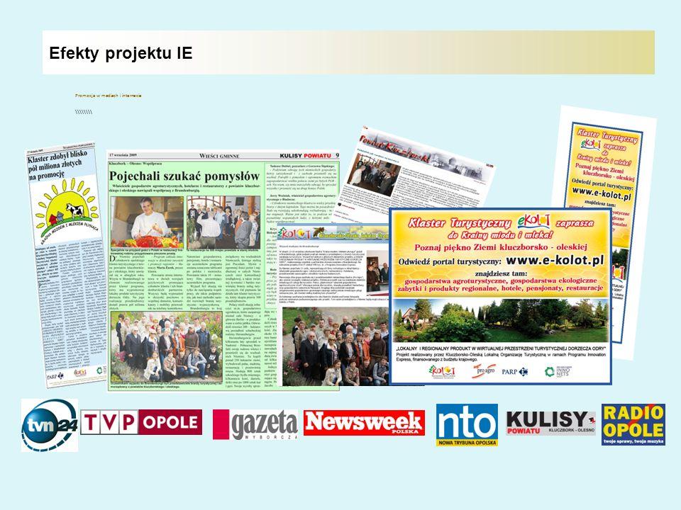 Efekty projektu IE Promocja w mediach i internecie \\\\\\\\