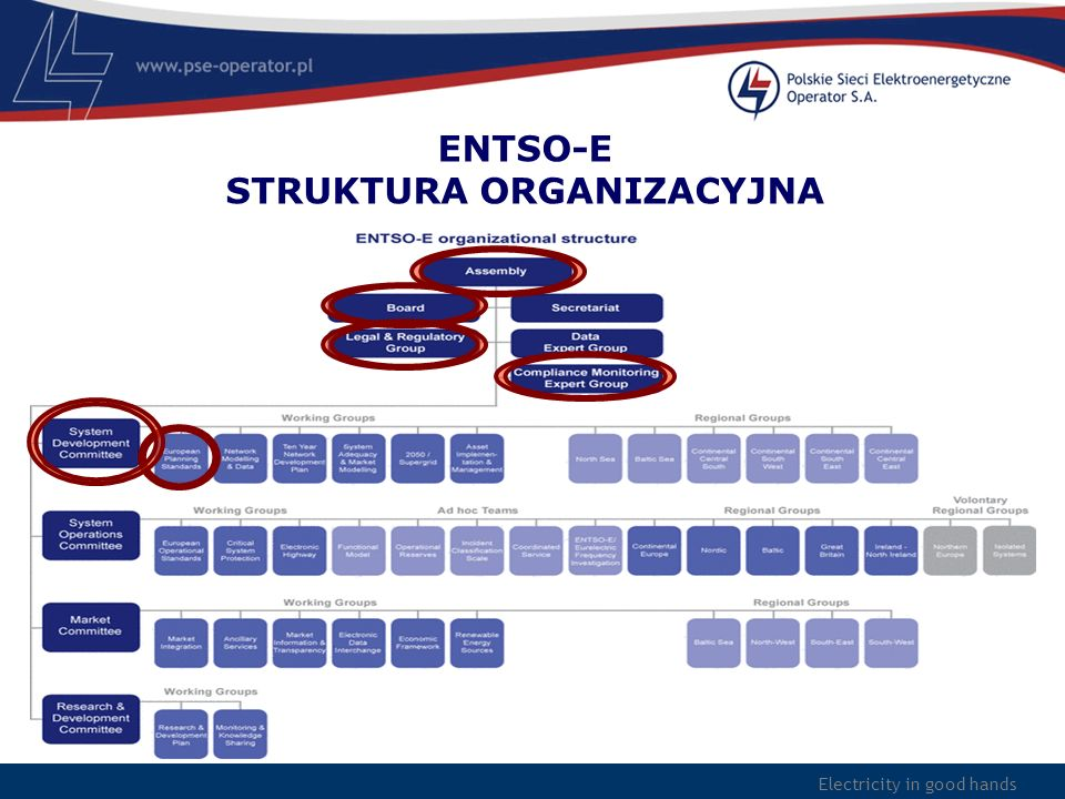 ENTSO-E STRUKTURA ORGANIZACYJNA