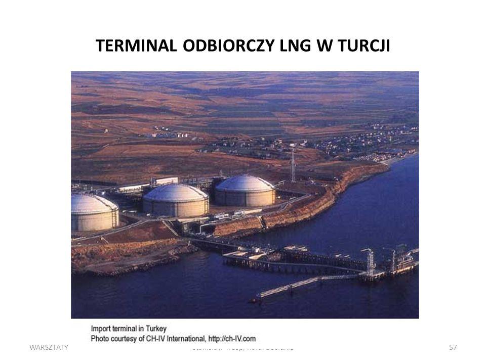 TERMINAL ODBIORCZY LNG W TURCJI