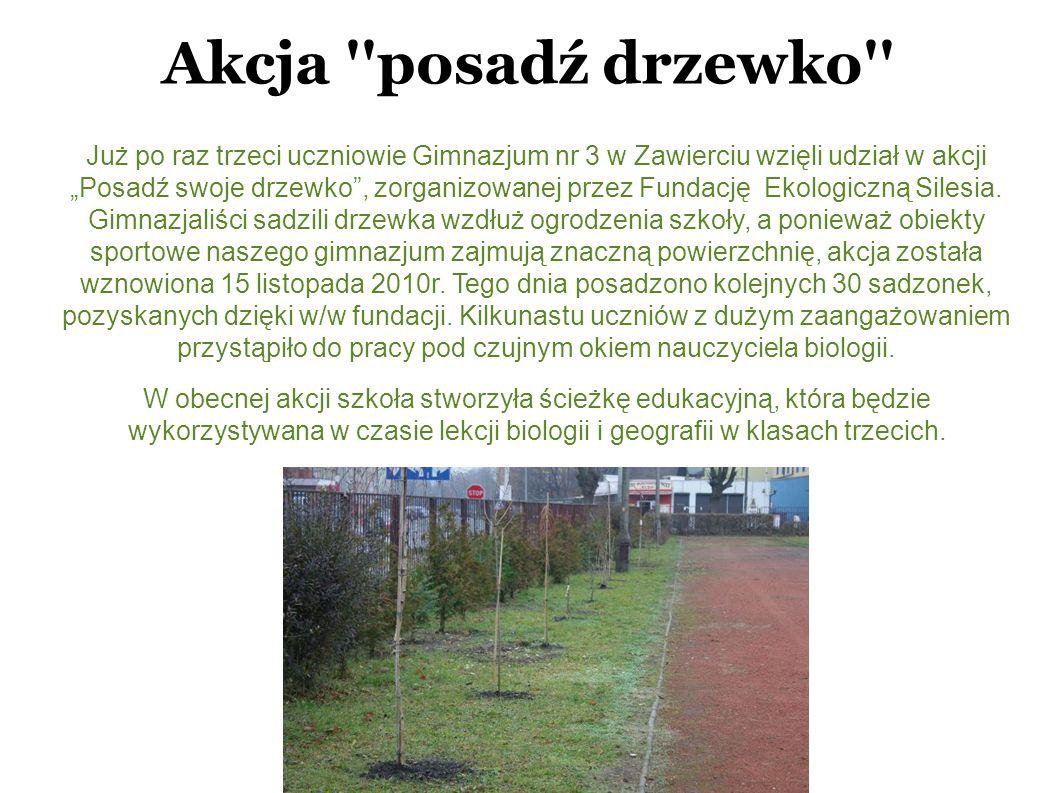 Akcja posadź drzewko