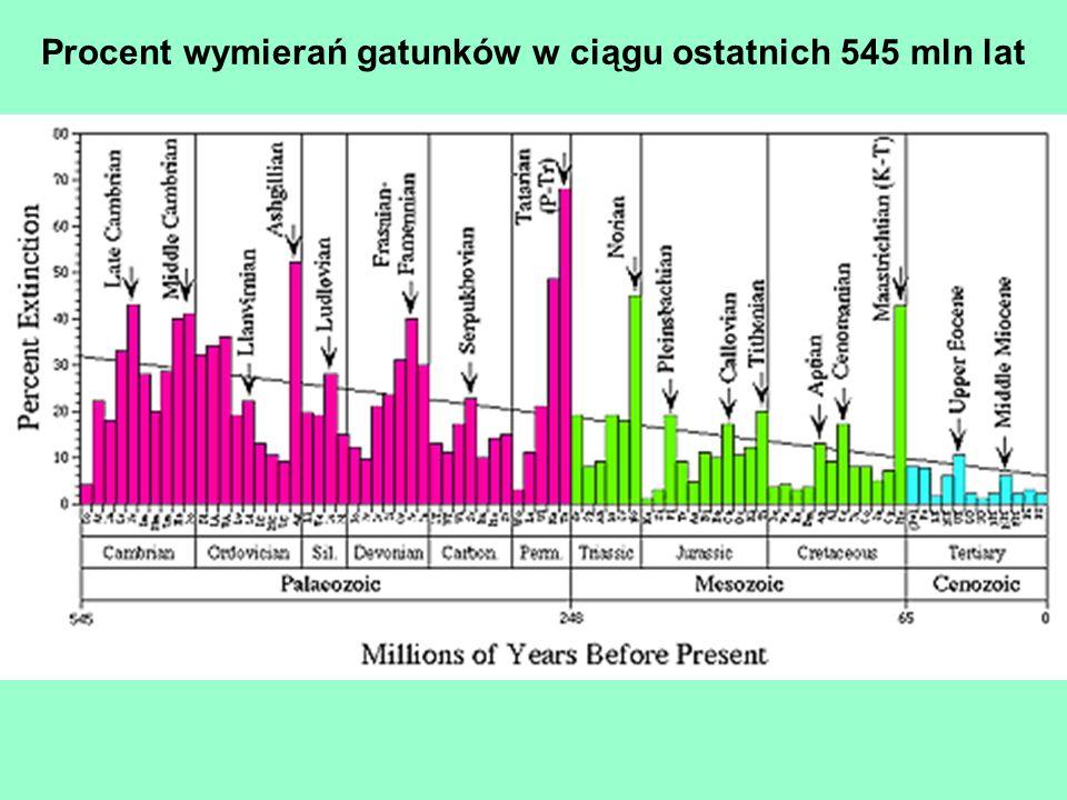 Procent wymierań gatunków w ciągu ostatnich 545 mln lat