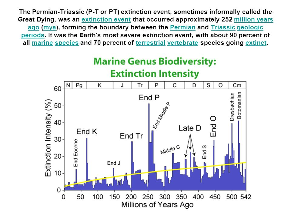 The Permian-Triassic (P-T or PT) extinction event, sometimes informally called the Great Dying, was an extinction event that occurred approximately 252 million years ago (mya), forming the boundary between the Permian and Triassic geologic periods.