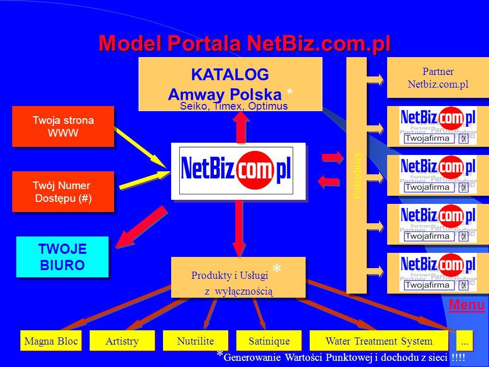 Model Portala NetBiz.com.pl