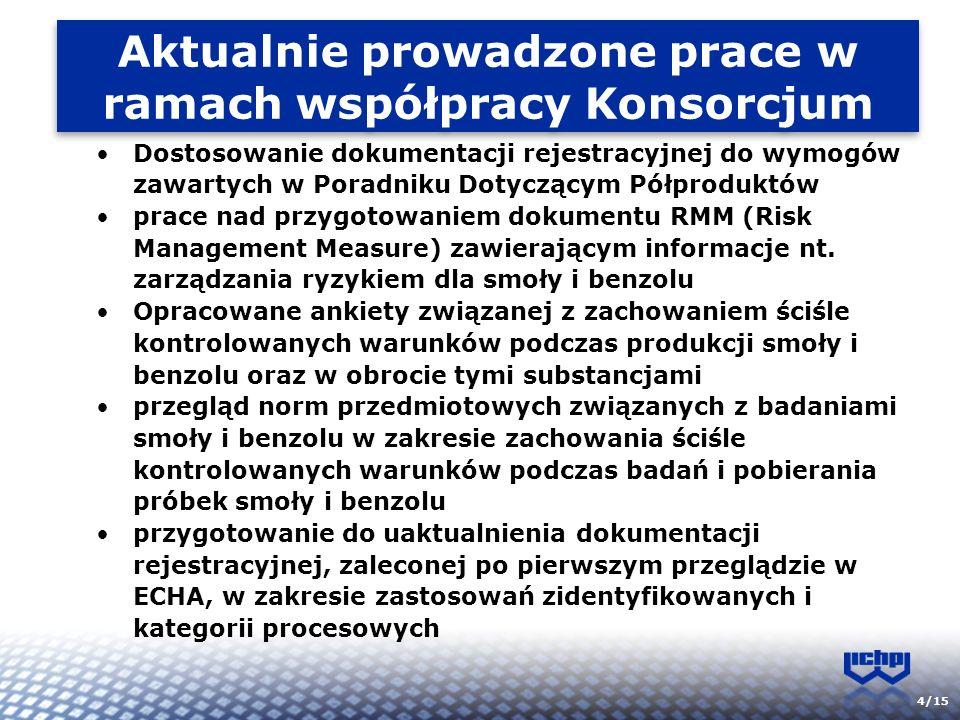Aktualnie prowadzone prace w ramach współpracy Konsorcjum