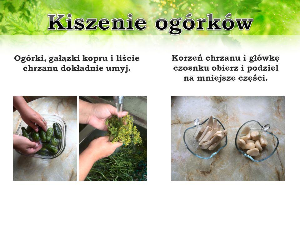 Kiszenie ogórków Ogórki, gałązki kopru i liście chrzanu dokładnie umyj.